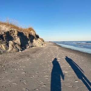 Long figure shadows looking down sore line eroded sand dune to left blue sky and water to right