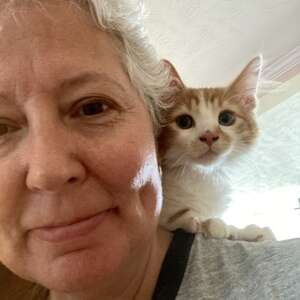 Orange and white kitten sits on white haired womanrsquos shoulder